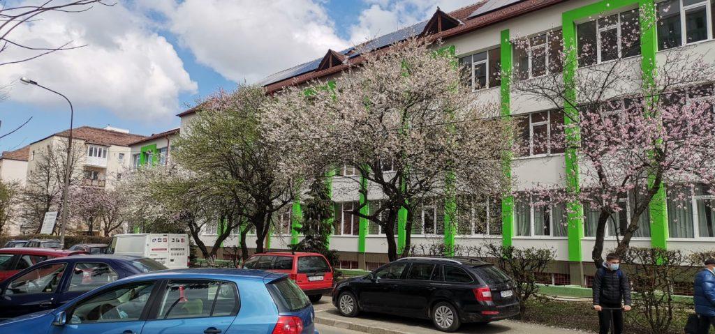 Cea mai viu colorată stradă din Sibiu!